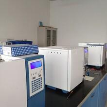 测定非甲烷总烃的气相色谱仪在山东瑞德专业生产厂家图片