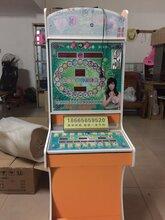 大庆美人鱼水果机,漂亮宝贝水果机,赛车经典游戏机,都市达人游戏机价格