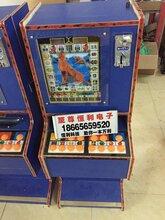 河北衡山水果森林水果机,娃娃机礼品机销售点,拍拍乐游戏机批发厂家