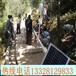 婁底太陽能路燈單價多少