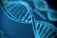 赚钱的中学生基因检测加盟项目有哪些