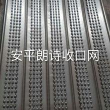 安平工厂直销收口网/快易收口网/建筑模板网图片