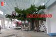 泰安大型假樹制作,泰安酒店假樹設計施工隊伍