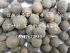 茶籽茶叶籽茶叶种子茶树种子茶叶厂?#39029;?#24180;供应