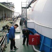 上海到伊基克海运专线散货拼箱整箱进出口物流国际海运货代公司