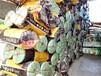 捆扎绳厂家直销供应捆扎绳包装绳美观实用价格优惠