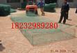 福建福州供应矽胶包塑格宾网防腐蚀防锈包塑格宾网每平米价格