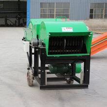 廠家直銷養殖秸稈揉絲機鍘草豬草飼料粉碎機畜牧機械圖片