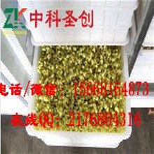 桃山区小型豆芽机价格,全自动豆芽机械图片