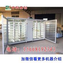 哈尔滨自动豆芽机供应商,做豆芽的机器,豆芽制造设备
