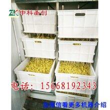 宿州豆芽加工机器,豆芽生产机器,加工豆芽机器