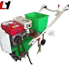 工厂供应大功率榨菜播种机高效玉米精播机种肥图片