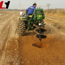 后置式挖坑机/龙钰机械多用途拖拉机挖坑机械/多功能植树挖坑机图片