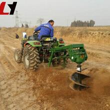 拖拉機改裝挖坑機質保兩年小型大馬力大豆播種機圖片