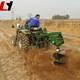 拖拉机挖坑机 (18)
