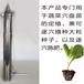 龙钰公司水稻移栽机可定做新型红薯苗移栽机辣椒移栽机