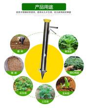 蔬菜苗移栽機工廠供應新款秧苗移植機圖片