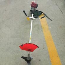 小型农村打草机/小型背负式打草机多用途国产打草机厂家/家用斜挎式割草机图片