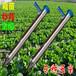 龍鈺秧苗移栽器,可定做秧苗移植機