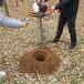 龍鈺植樹挖坑機,新品挖坑機器