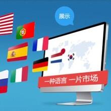 网站建设,安徽互联网开发领先品牌