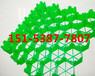 天门塑料植草格的抗压能力应如何分辨,玖和新建材自产自销
