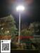 常德太阳能路灯批发LED太阳能路灯常德6米路灯价格