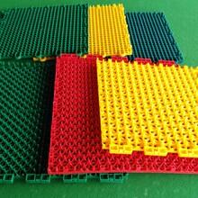 室外拼装地板篮球场拼装地板网球拼装地板供应