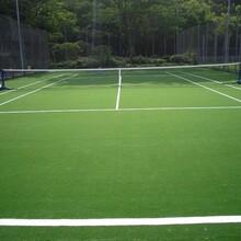 网球场人造草坪运动场地人造草户外人造草供应
