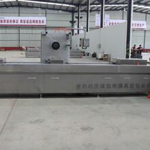 潍坊阿胶420全自动拉伸膜真空包装机厂家