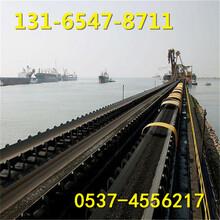 矿用大倾角输送机,化肥装卸车带式输送设备图片