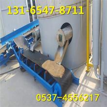电动升降输送机,报社装车用带式输送机图片