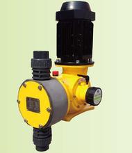 计量泵生产厂家兰多泵业面向西北销售各种型号计量泵及加药装置图片