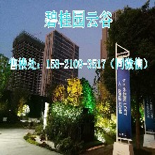 5.5层高全明落地窗LOFT公寓南通碧桂园云谷