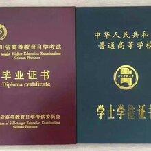 四川独立本科小学教育自考报名专业考试课程