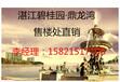 湛江碧桂园鼎龙湾——官方权威认证一线海景房