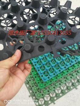 2公分蓄排水板批发塑料排水板规格