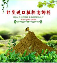 植物养发粉印度海娜粉植物染发粉植物海娜粉OEM贴牌代加工图片