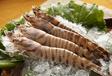 冷凍魚進口清關代理,青島海鮮進口報關行??!