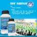 果汁飲料酵母菌控制果汁飲料殺菌劑諾福果汁飲料消毒技術