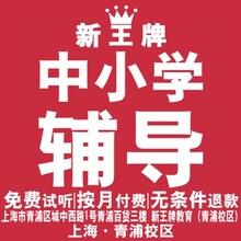 青浦小学补习班新王牌教育个性化辅导计划表