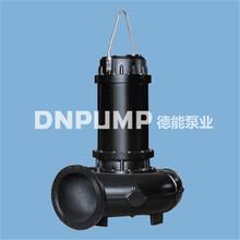 WQ自动耦合式排污泵化粪池专用排污泵图片