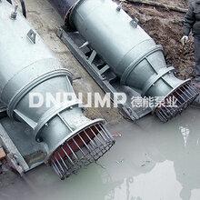 船坞水位升降泵_大流量_雪橇式轴流泵图片