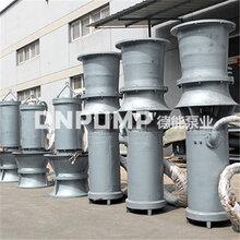 天津供应_大口径_简易型潜水泵图片