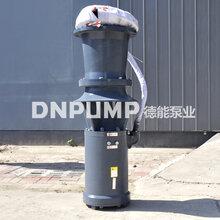 350QSZ-7.8-37中吸式潜水轴流泵图片