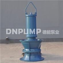 德能泵业潜水轴流泵分类图片