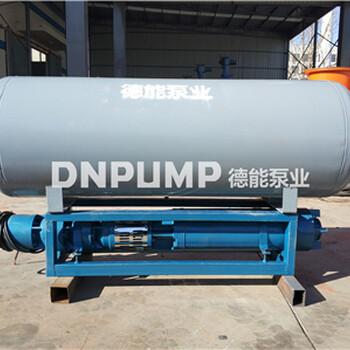 高扬程浮筒式潜水泵德能泵业质量好