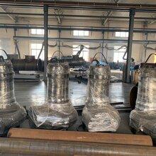 皮实耐用铸铁搅匀式排污泵图片