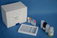 兔子神经营养因子3(NT-3)ELISA试剂盒说明书价格