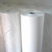 供应PET保护膜硅胶保护膜聚酯薄膜图片